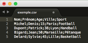 Import fichier CSV logiciel de Texte